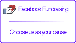 Create a fundraising page using FaceBook